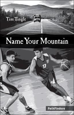 Book cover for Name Your Mountain