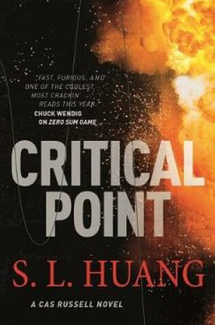 Cover of Critical Point