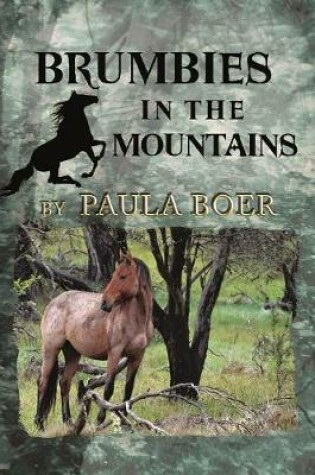 Cover of Brumbies in the Mountains