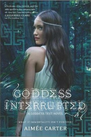 Cover of Goddess Interrupted