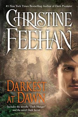 Cover of Darkest at Dawn