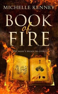 Cover of Book of Fire