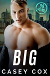 Book cover for Big