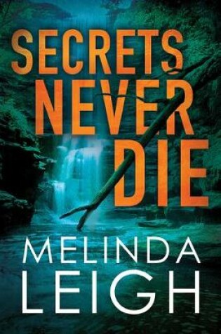 Cover of Secrets Never Die