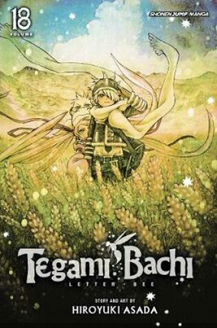 Cover of Tegami Bachi, Vol. 18
