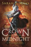 Book cover for Crown of Midnight