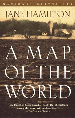 Cover of A Map of the World