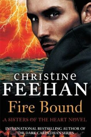 Cover of Fire Bound