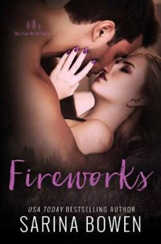 Cover of Fireworks