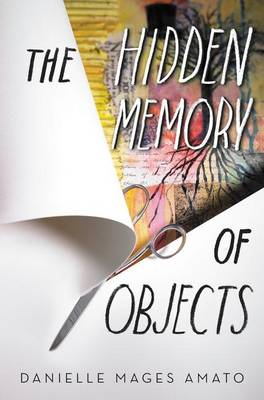 Cover of The Hidden Memory of Objects