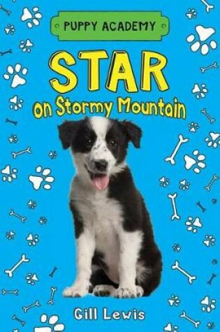 Cover of Star on Stormy Mountain