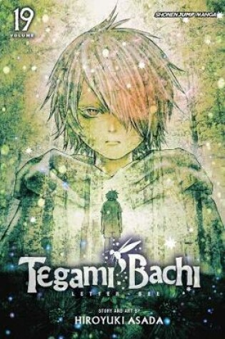 Cover of Tegami Bachi, Vol. 19