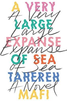 Cover of A Very Large Expanse of Sea