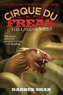 Cover of The Lake of Souls
