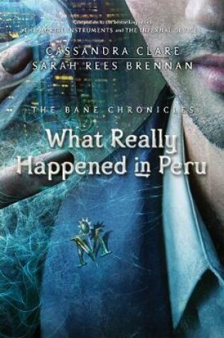 Cover of What Really Happened in Peru