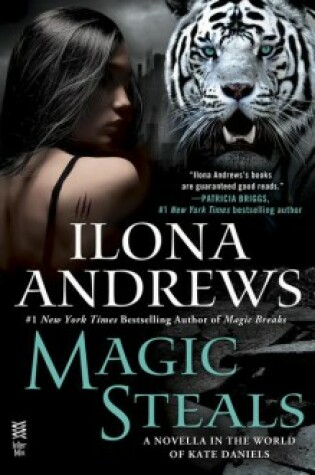 Cover of Magic Steals
