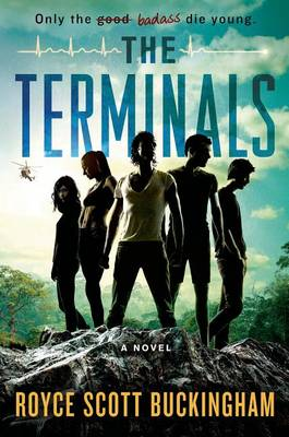 Cover of The Terminals