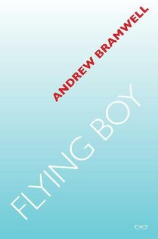 Cover of Flying Boy