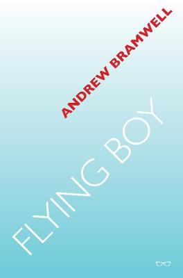 Book cover for Flying Boy