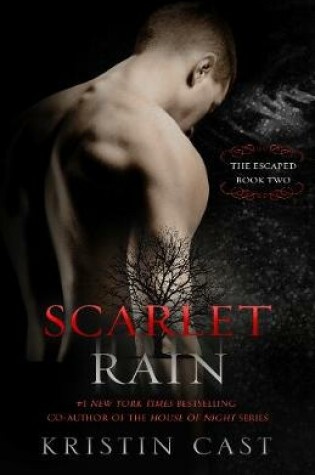 Cover of Scarlet Rain