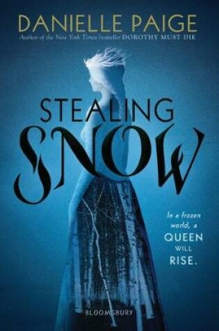 Cover of Stealing Snow