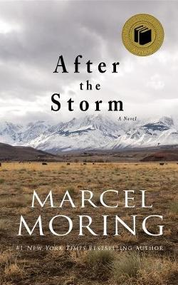 Book cover for After the Storm
