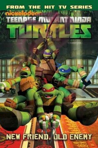 Cover of Teenage Mutant Ninja Turtles Animated Volume 2 Never Say Xever / The Gauntlet