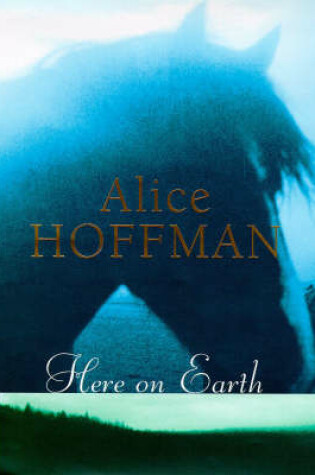 Cover of Here on Earth