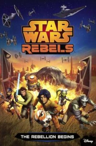 Cover of The Rebellion Begins