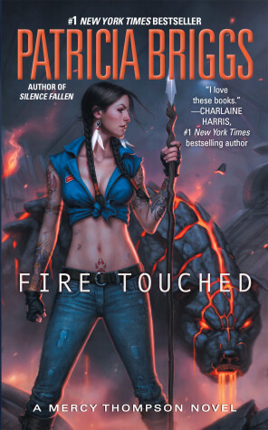 Cover of Fire Touched