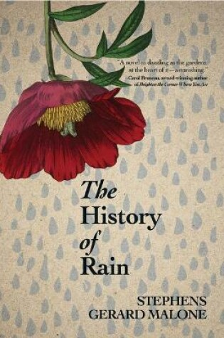 Cover of The History of Rain