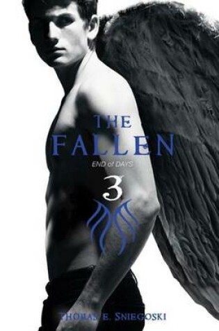 Cover of Fallen #3: End of Days