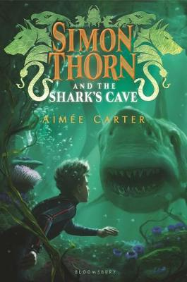 Cover of Simon Thorn and the Shark's Cave