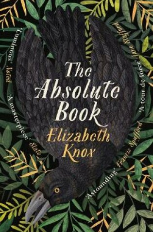 Cover of The Absolute Book