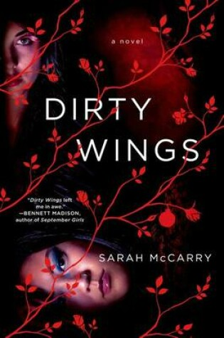 Cover of Dirty Wings