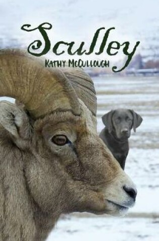 Cover of Sculley