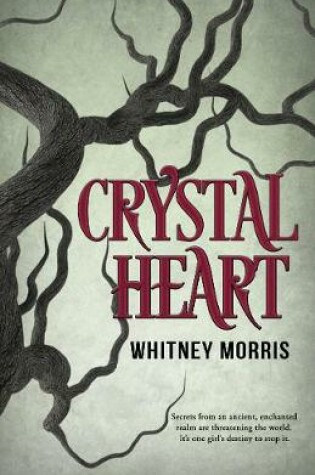 Cover of Crystal Heart