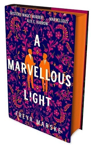 Cover of A Marvellous Light