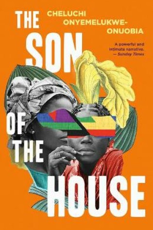 Cover of The Son of the House