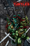 Book cover for Teenage Mutant Ninja Turtles: The Ultimate Collection Volume 4