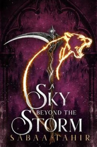 Cover of A Sky Beyond the Storm