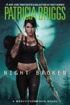 Book cover for Night Broken