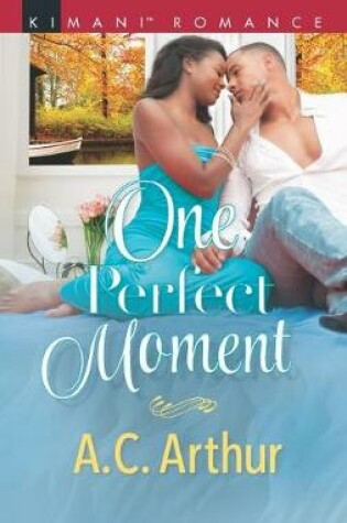 Cover of One Perfect Moment