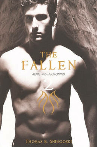 Cover of Aerie; Reckoning