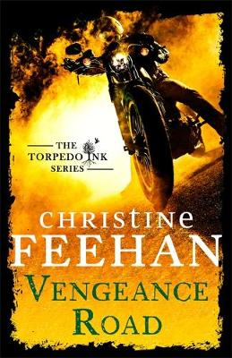 Book cover for Vengeance Road