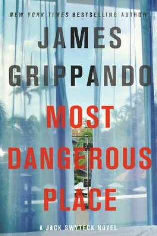 Cover of The Most Dangerous Place