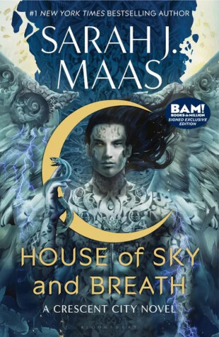 Book cover for House of Sky and Breath