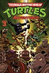Book cover for Teenage Mutant Ninja Turtles Adventures Volume 3